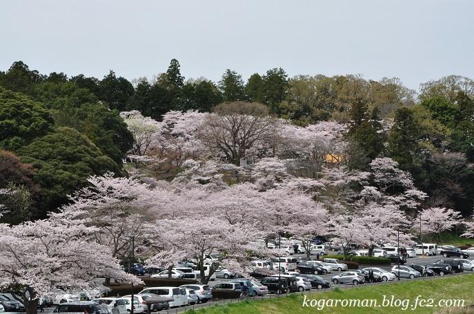 06桜山駐車場