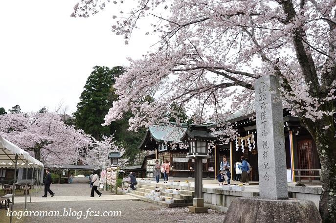 03茨城県護国神社