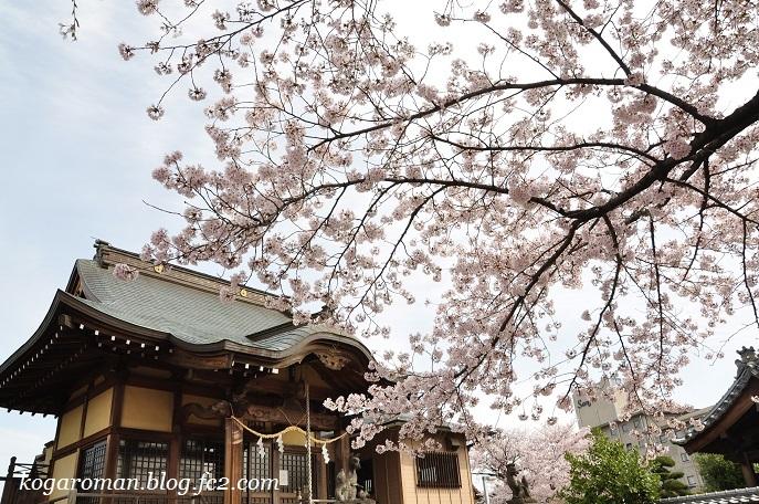 05福寿稲荷神社