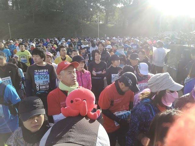 高知マラソン2018タコ