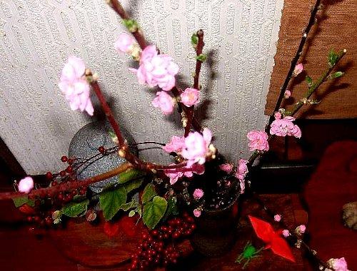 桃のお花001