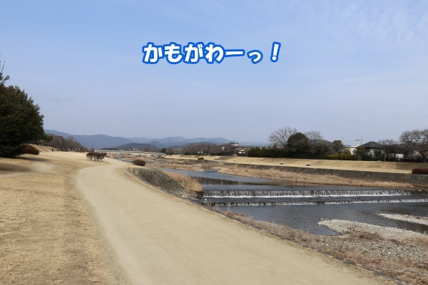 IMG_125420180225鴨川さんぽ