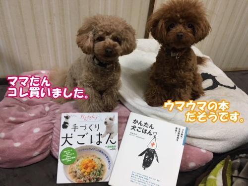 201802購入犬ごはんの本1