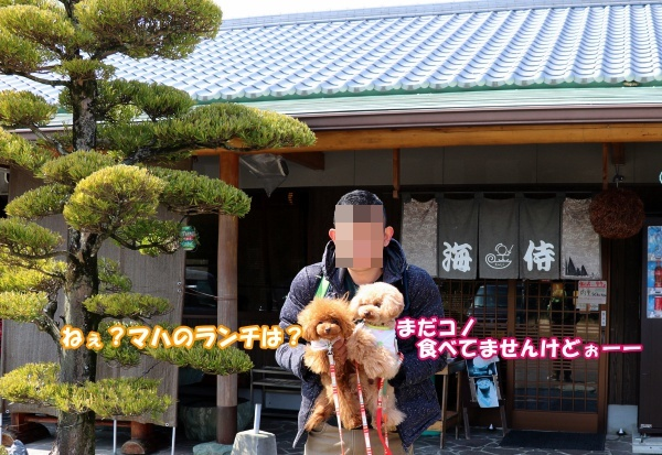 IMG_158420180311ブランシアンオフ会讃岐うどん「かいじ」さん