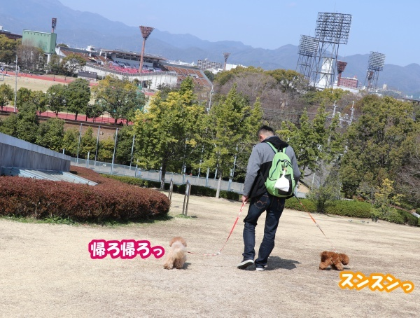 IMG_181120180312西京極散歩おしまい♪
