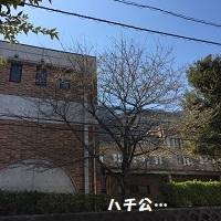 201303193.jpg
