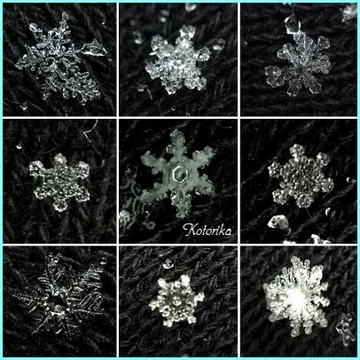snowcrystal.jpg