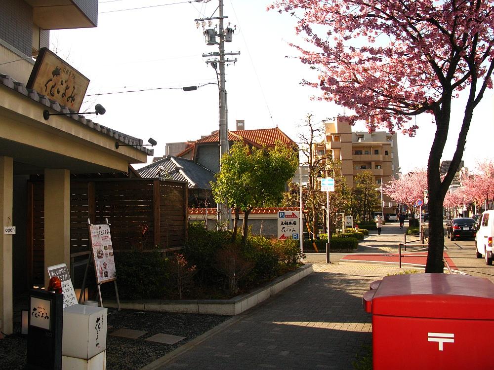 2018_03_23 名古屋市東区泉:大寒桜の並木道05