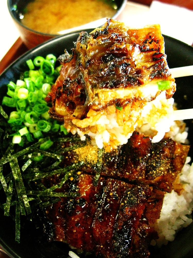 2017_07_22大府:JAあぐりタウンげんきの郷 魚太郎55
