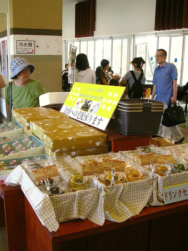2017_07_22大府:まるごと知多スイーツ SukuSuku CAFE(すくすくカフェ)16