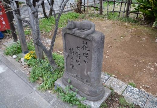 180323-165801-2018桜祭り (483)_R