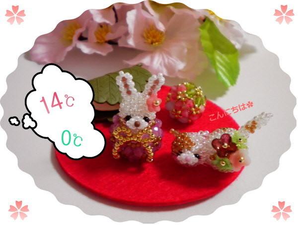 花ブ20180228-1