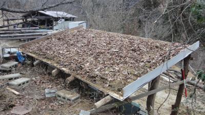 落ち葉で乾燥防止