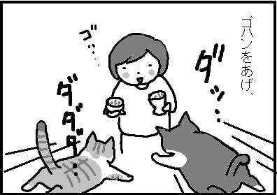 443-2.jpg