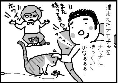 443-7.jpg