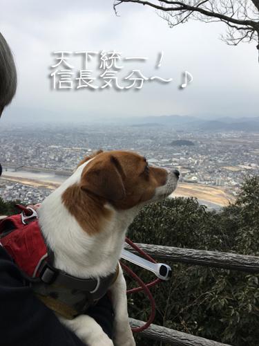 2018-02-24-金華山登山-009
