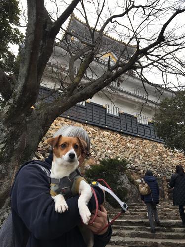 2018-02-24-金華山登山-005