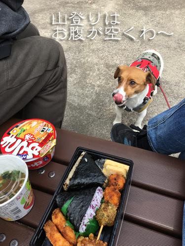 2018-02-24-金華山登山-001
