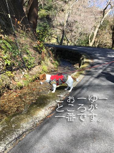 2018-03-10-養老登山-020