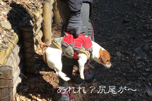 2018-03-10-養老登山-018