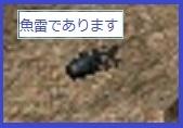 LinC0739a.jpg