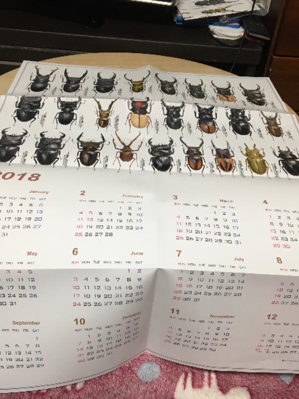 クワカブカレンダー