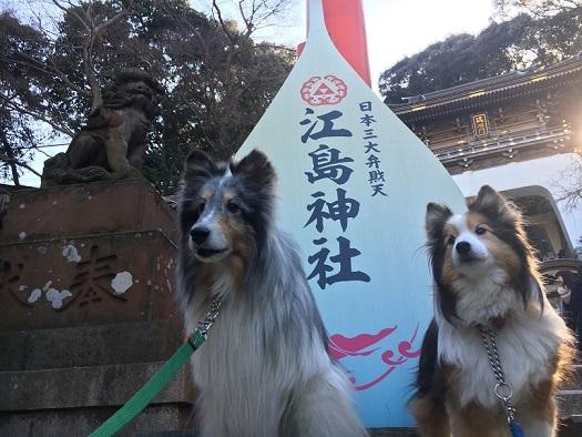 江の島散歩1