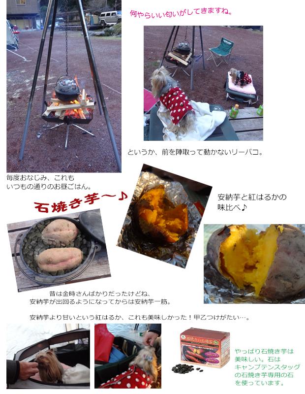 キャンプ②201801