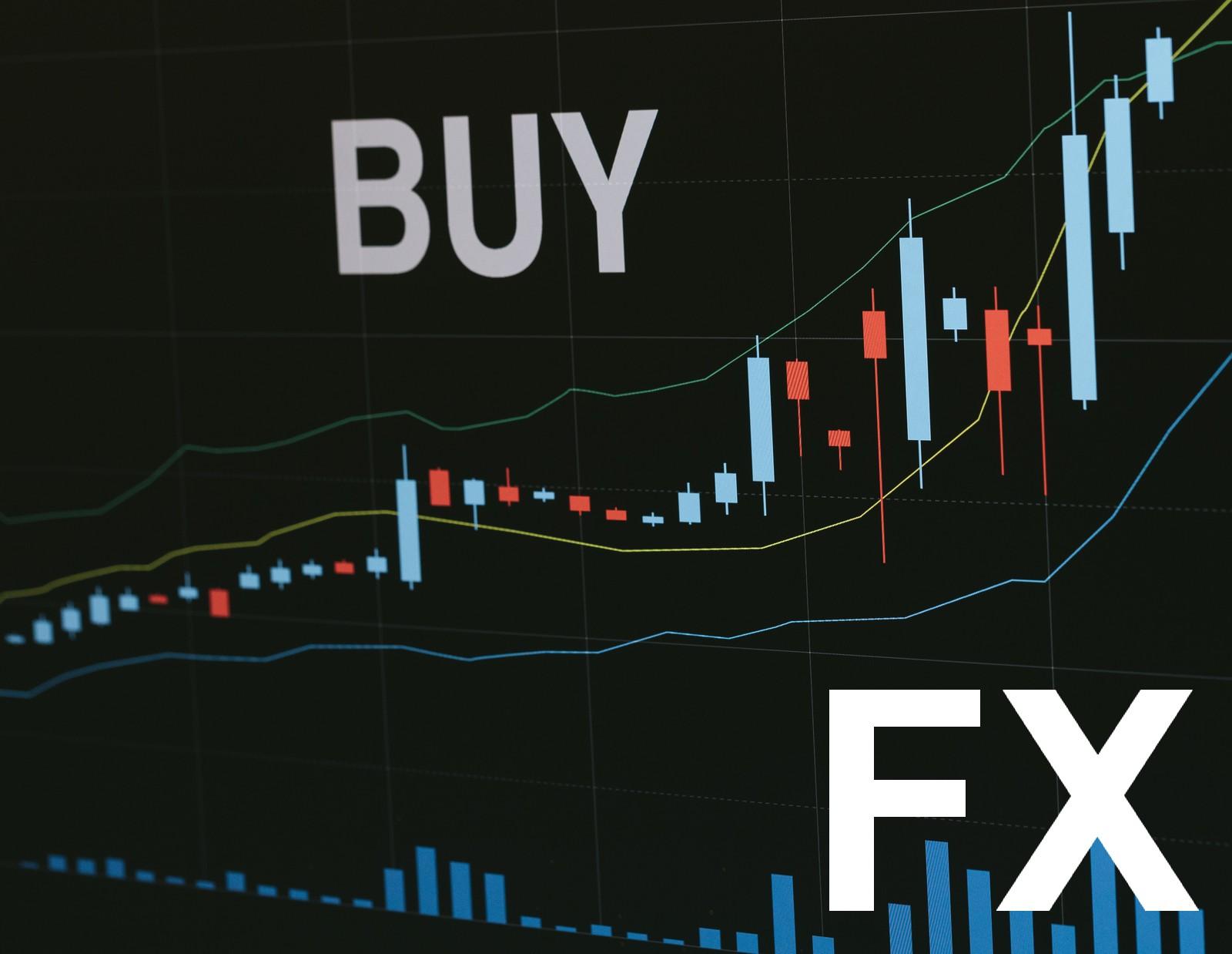 FXで資産運用