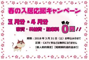 春キャンペーン2018