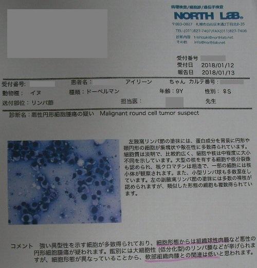 20180109採血病理検査結果①-1