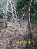 徳倉山からの急坂を過ぎゆる野になったところ