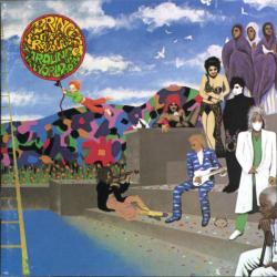 Prince The Revolution - Raspberry Beret2