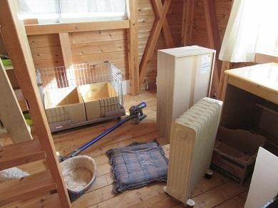 猫部屋大掃除