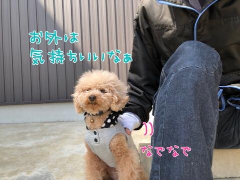 fc2blog_20180328212756e5a.jpg