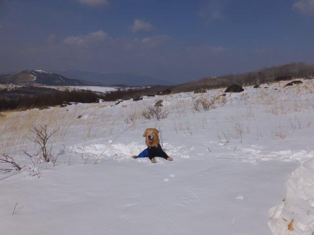 2018.2.24 霧ヶ峰 031