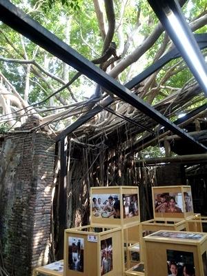 台南安平樹屋1803