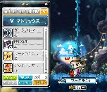 Maple16991a.jpg