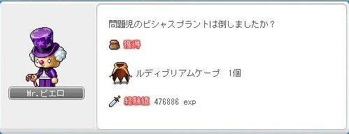 Maple_17001a.jpg
