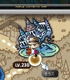 Maple_17009a.jpg