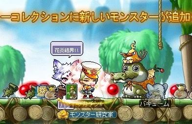 Maple_17100a.jpg