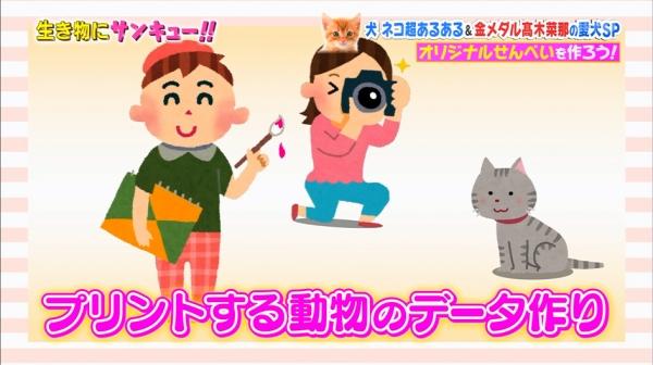 いきもの (29)