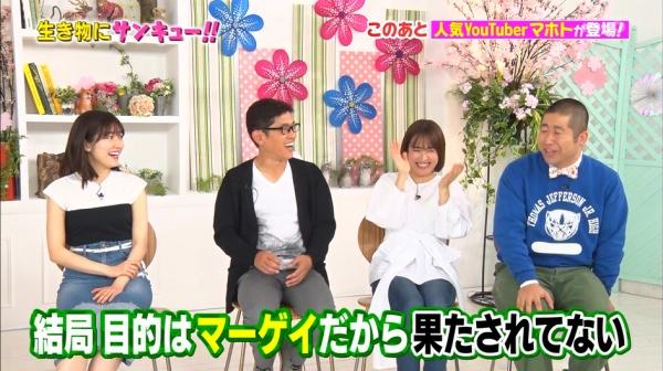 いきもの (30)