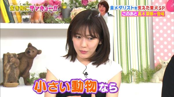 いきもの (40)