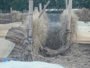 180323NO2とNO3の堆肥場