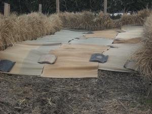 180324NO3堆肥2層作る