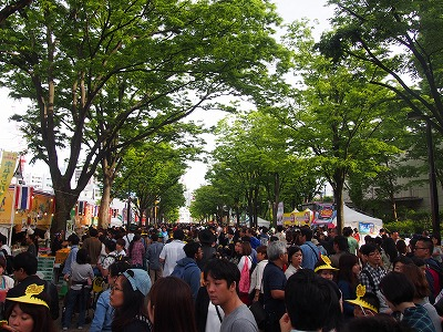 Thai-Festival190.jpg