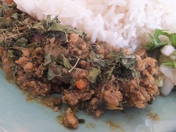 hatagaya-curry-spice-aoitori7.jpg