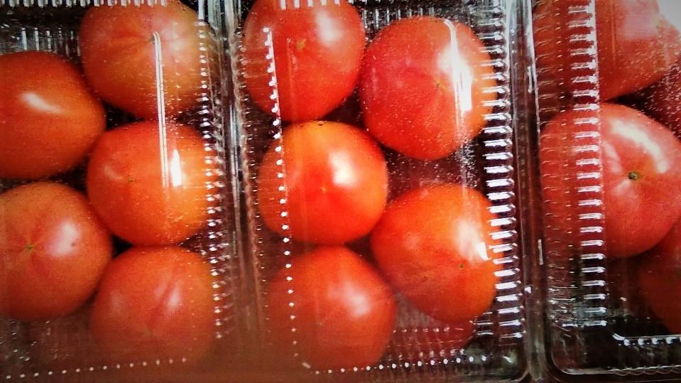 0308トマト