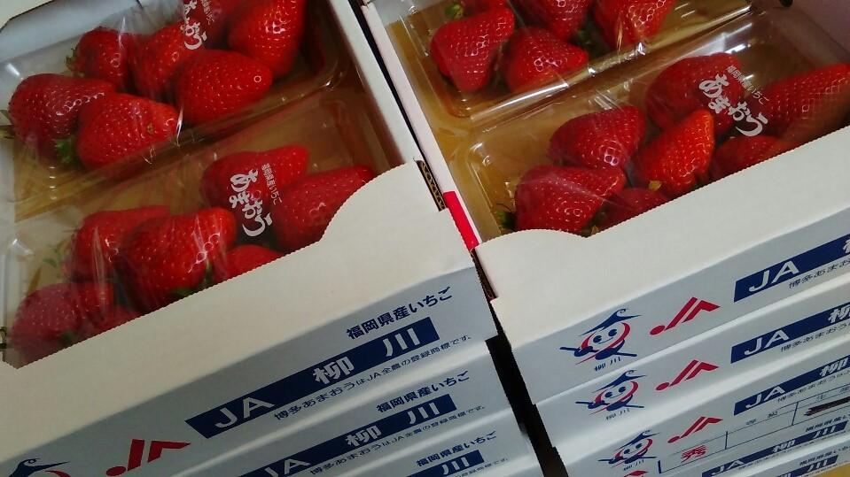0324苺-1